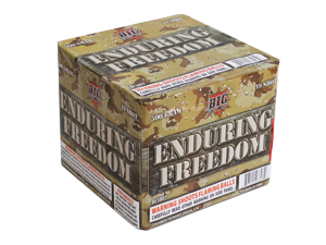 3807 - ENDURING FREEDOM